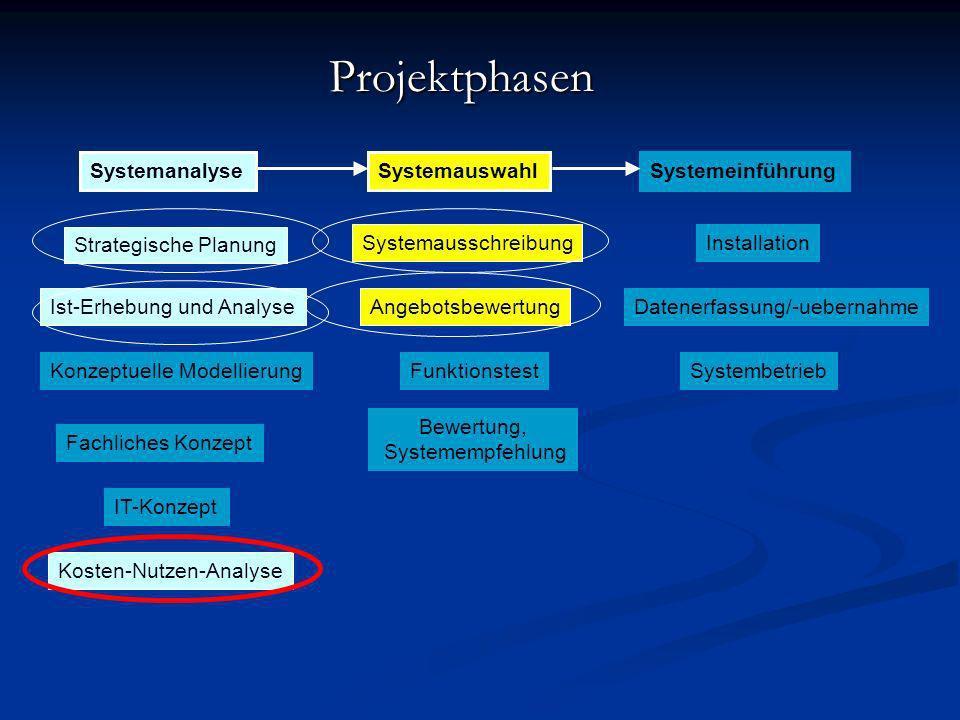 Projektphasen Systemanalyse Systemauswahl Systemeinführung