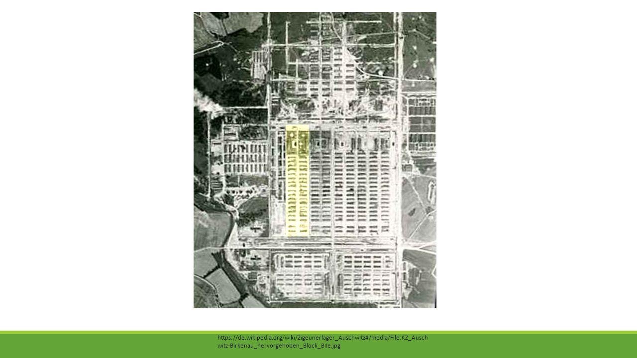 https://de.wikipedia.org/wiki/Zigeunerlager_Auschwitz#/media/File:KZ_Auschwitz-Birkenau_hervorgehoben_Block_BIIe.jpg