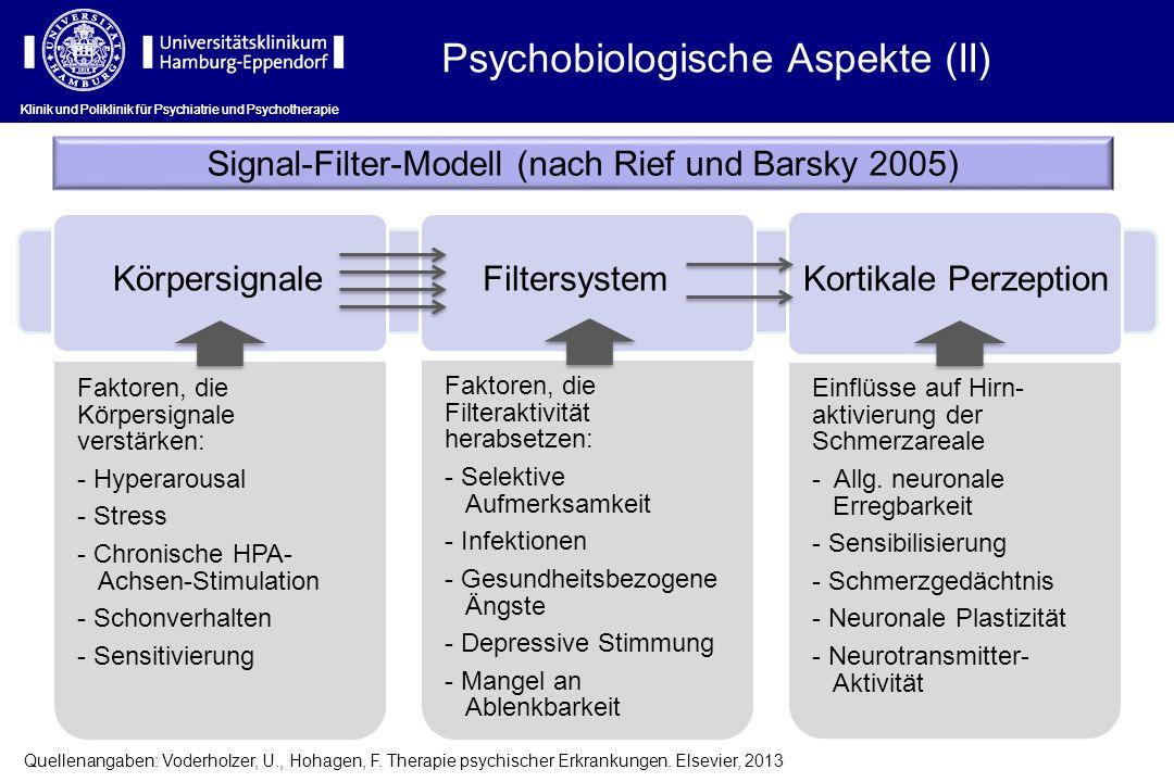 Signal-Filter-Modell (nach Rief und Barsky 2005)