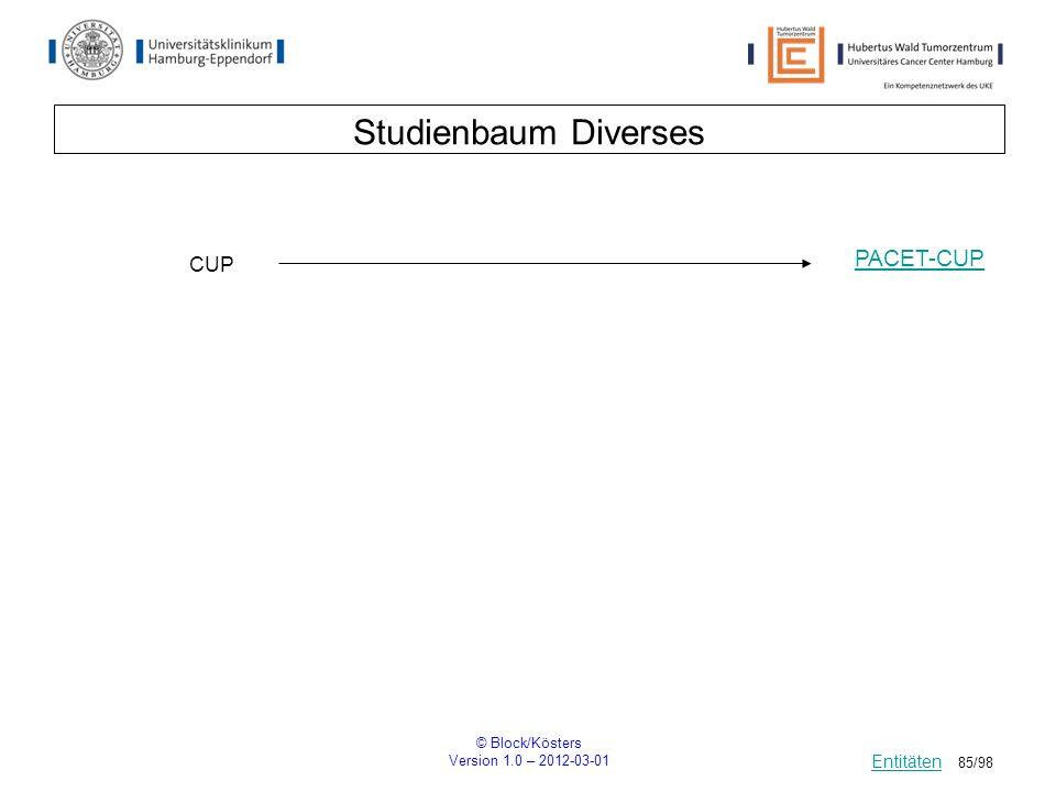 Studienbaum Diverses PACET-CUP CUP Entitäten © Block/Kösters