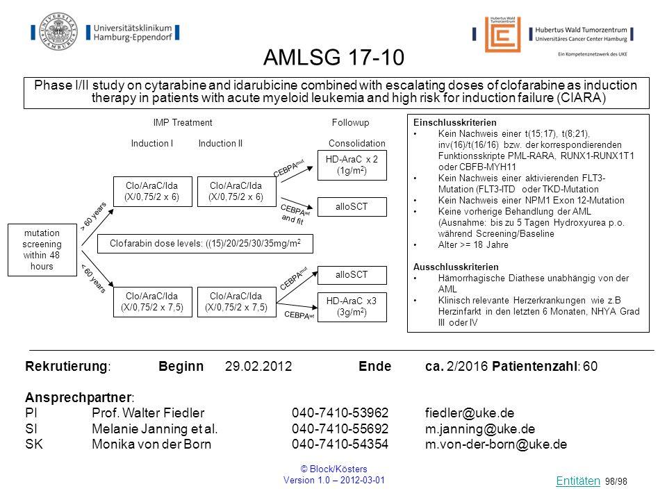 AMLSG 17-10