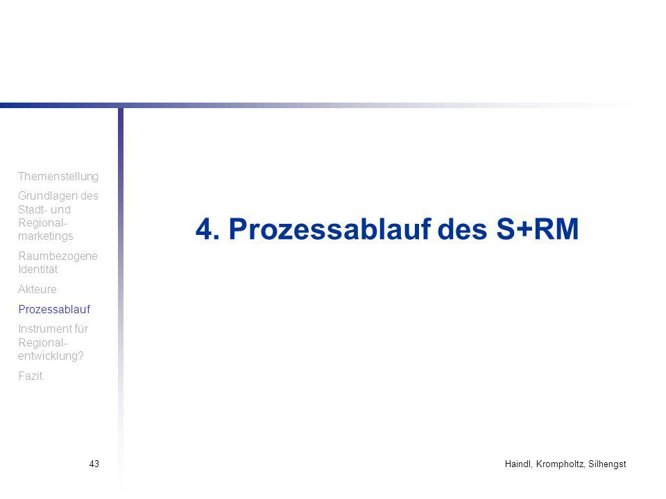 4. Prozessablauf des S+RM