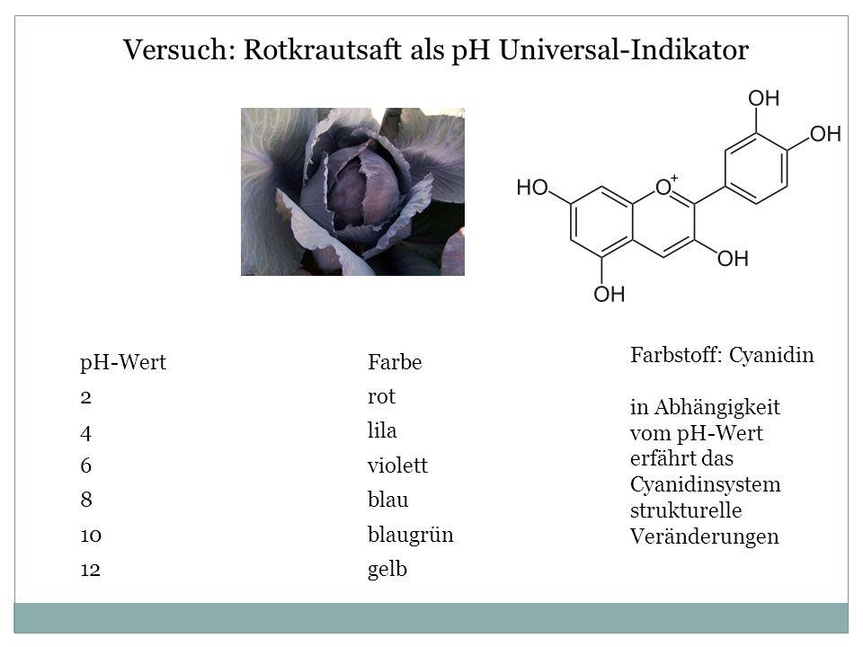 Versuch: Rotkrautsaft als pH Universal-Indikator