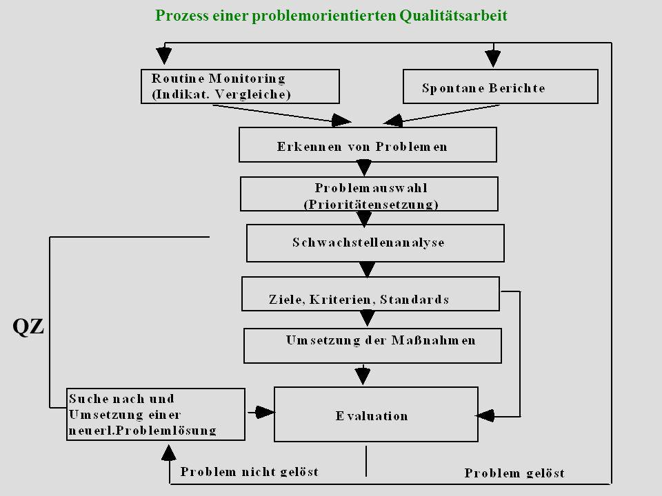 Prozess einer problemorientierten Qualitätsarbeit