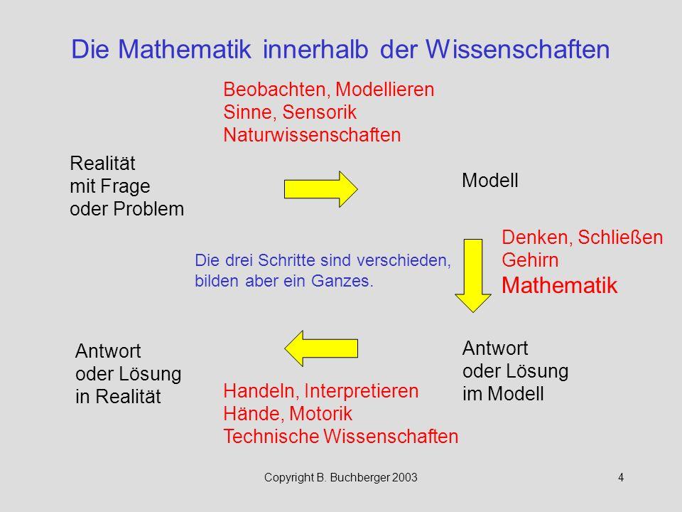 Die Mathematik innerhalb der Wissenschaften