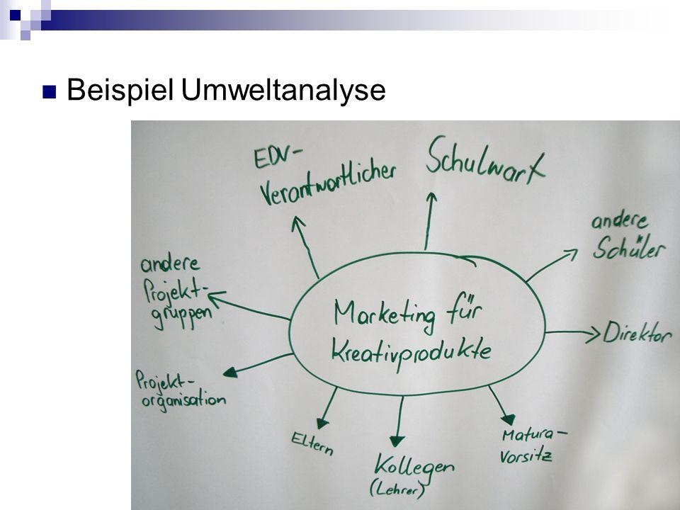 Beispiel Umweltanalyse