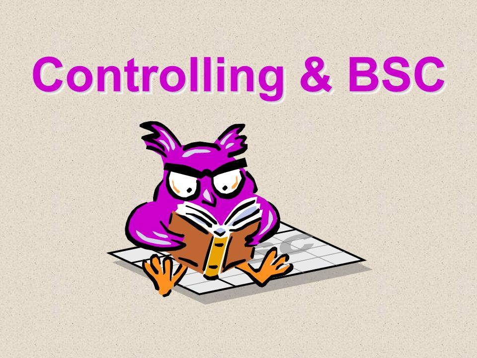 Controlling & BSC BSC