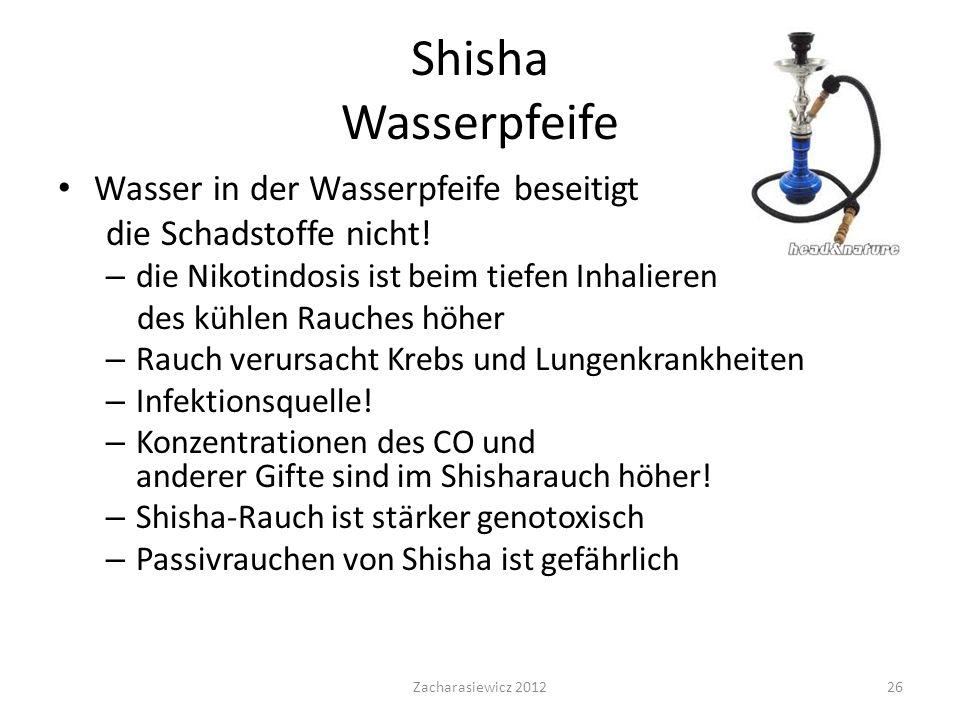 Shisha Wasserpfeife Wasser in der Wasserpfeife beseitigt