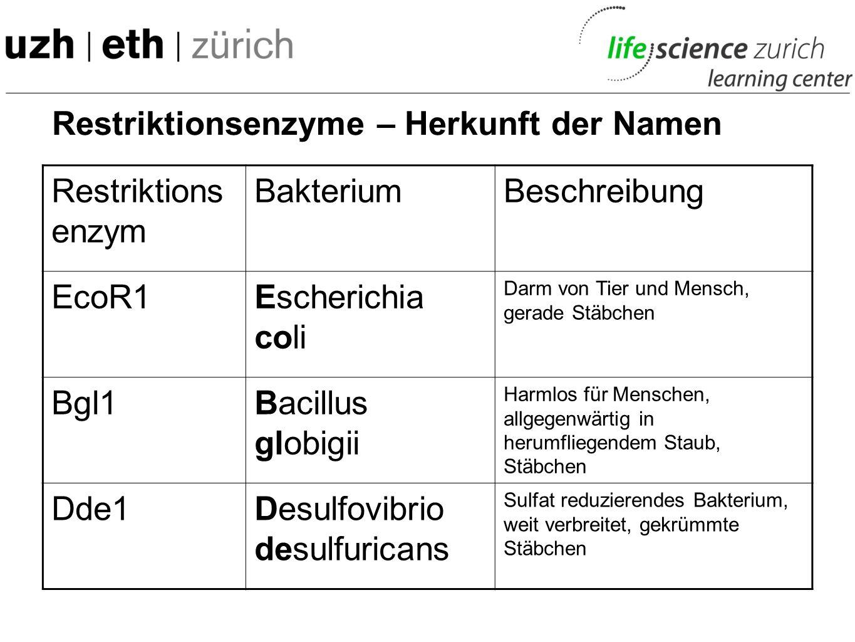 Restriktionsenzyme – Herkunft der Namen