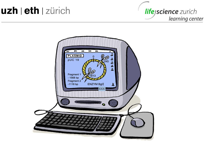 M: Da bereits mit kleinen plasmiden eher kompliziert, braucht man für das bearbeitenm grösserer Plasmide computer. Ohne sie wäre Molek unmöglich.