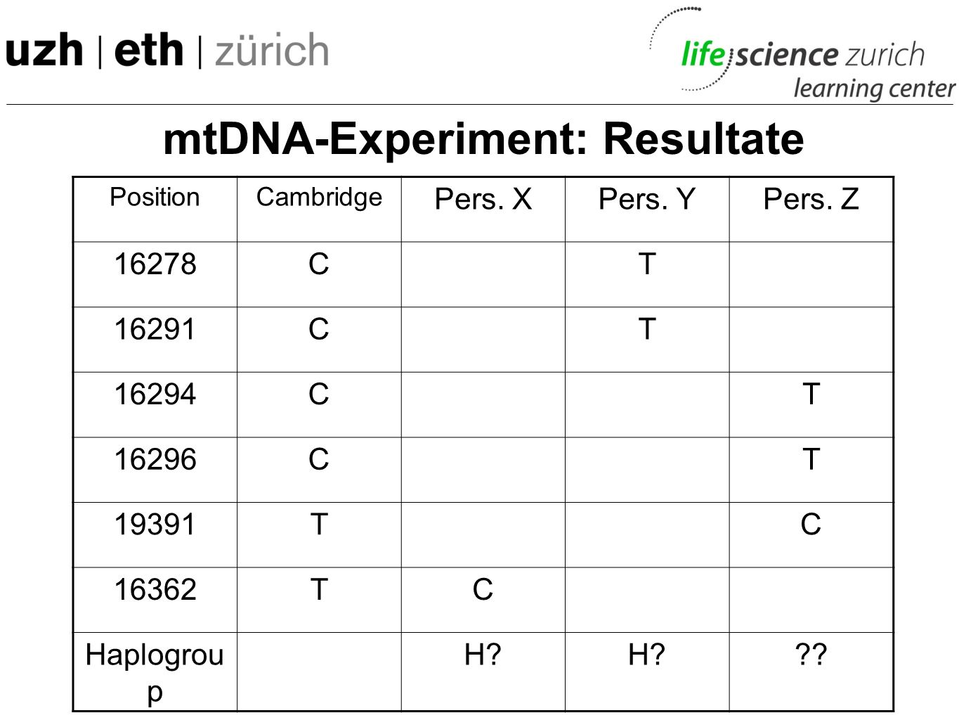 mtDNA-Experiment: Resultate