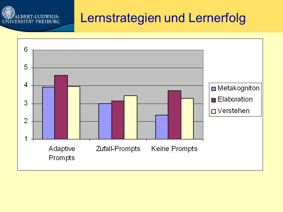 Lernstrategien und Lernerfolg