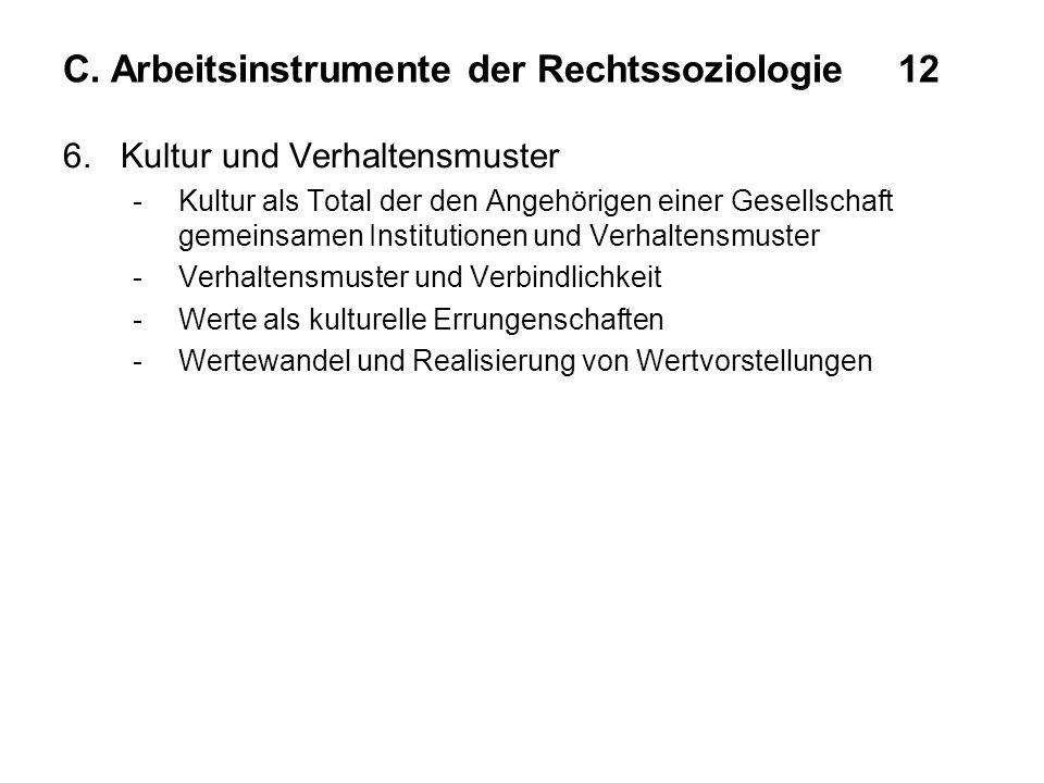 C. Arbeitsinstrumente der Rechtssoziologie 12