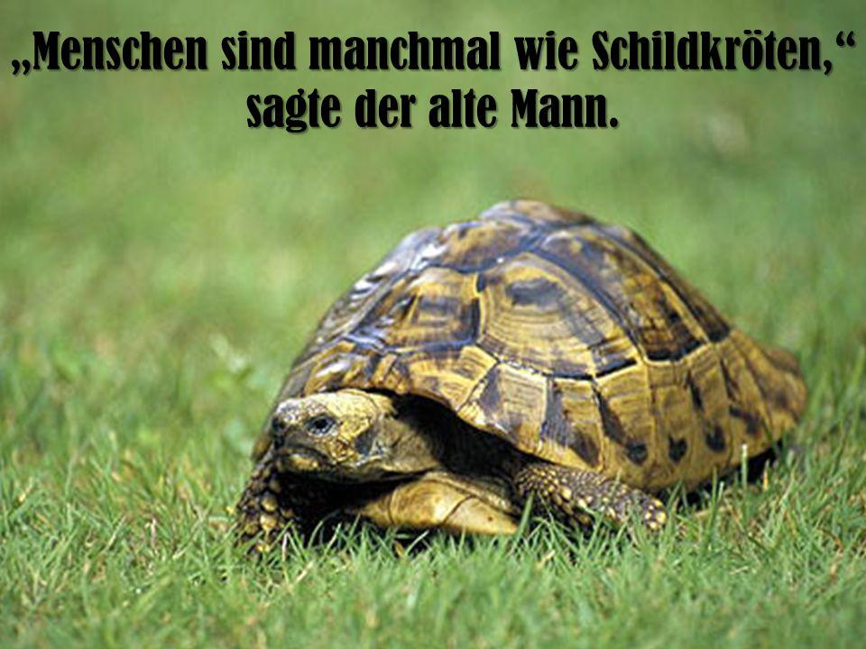 """""""Menschen sind manchmal wie Schildkröten, sagte der alte Mann."""