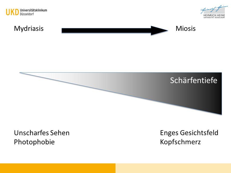 Schärfentiefe Mydriasis Miosis Unscharfes Sehen Photophobie