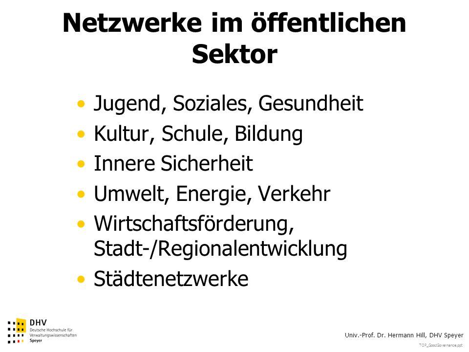 Netzwerke im öffentlichen Sektor