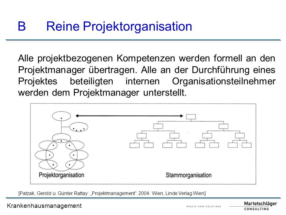 B Reine Projektorganisation