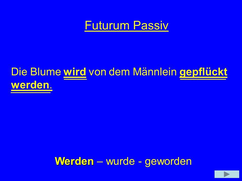 Futurum Passiv Die Blume wird von dem Männlein gepflückt werden.