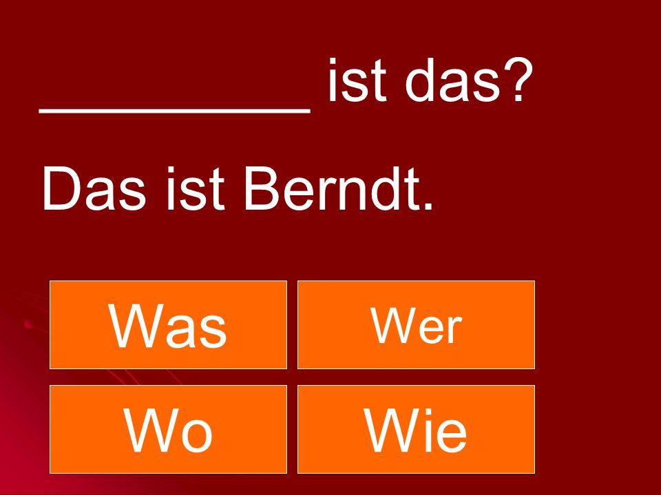 ________ ist das Das ist Berndt. Was Wer Wo Wie