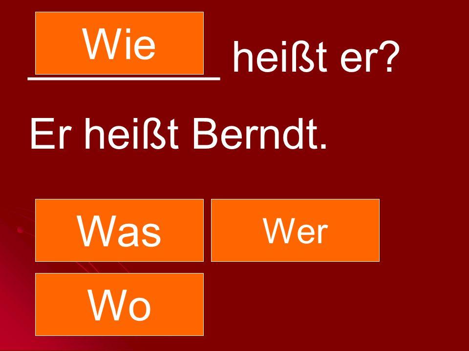 Wie ________ heißt er Er heißt Berndt. Was Wer Wo