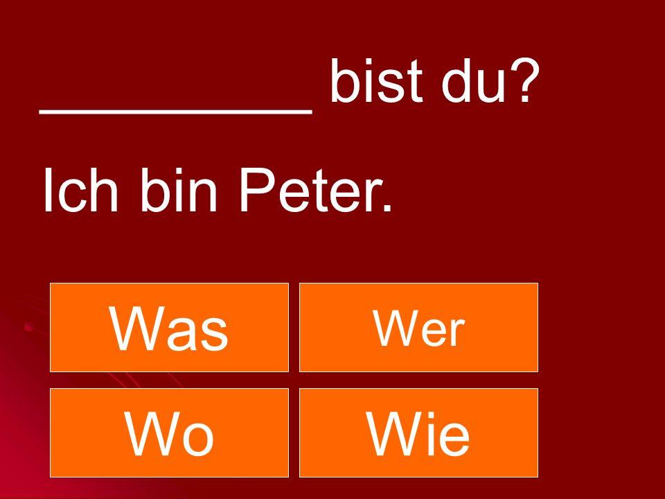 ________ bist du Ich bin Peter. Was Wer Wo Wie