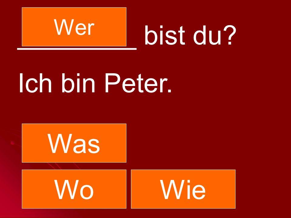 Wer ________ bist du Ich bin Peter. Was Wo Wie