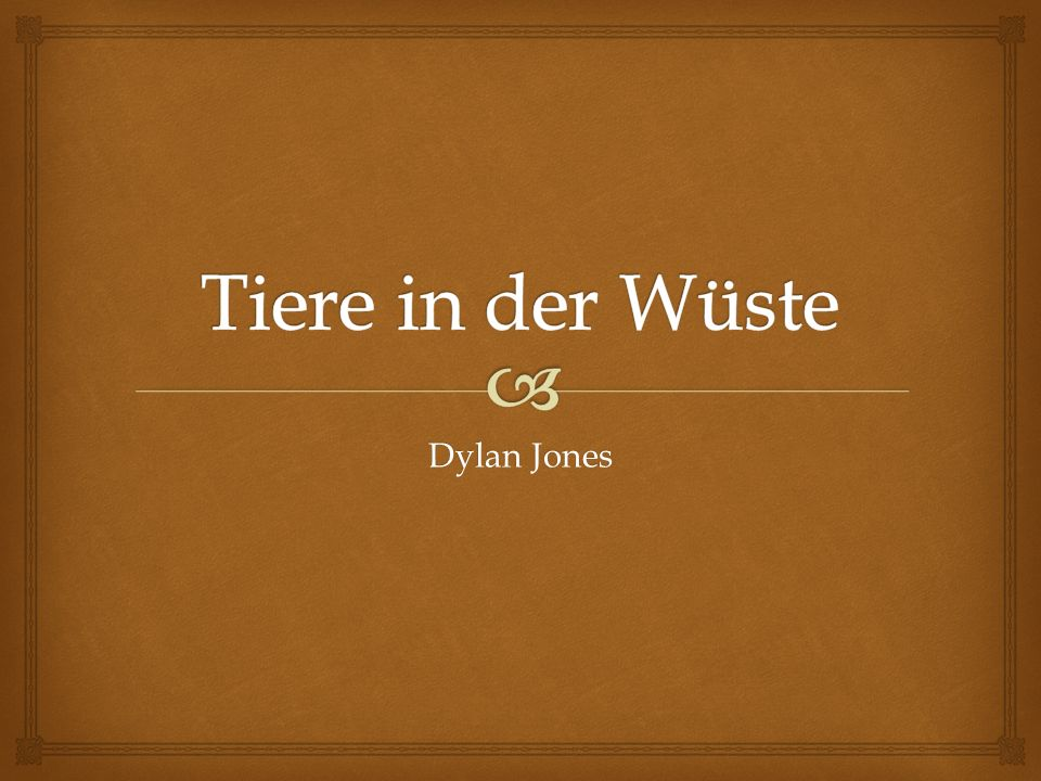 Tiere in der Wüste Dylan Jones