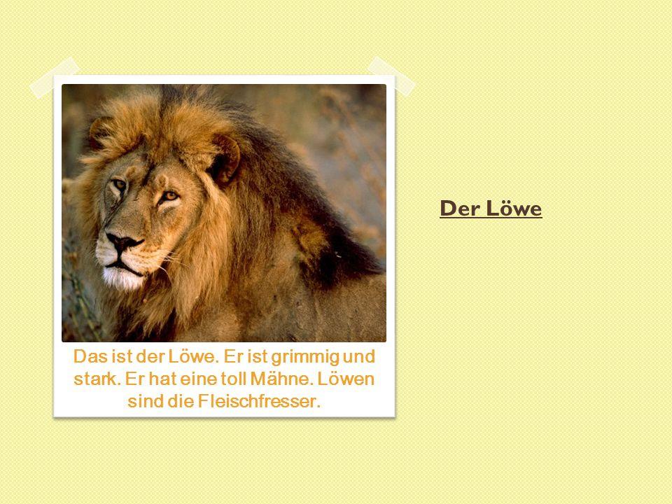 Der Löwe Das ist der Löwe. Er ist grimmig und stark.