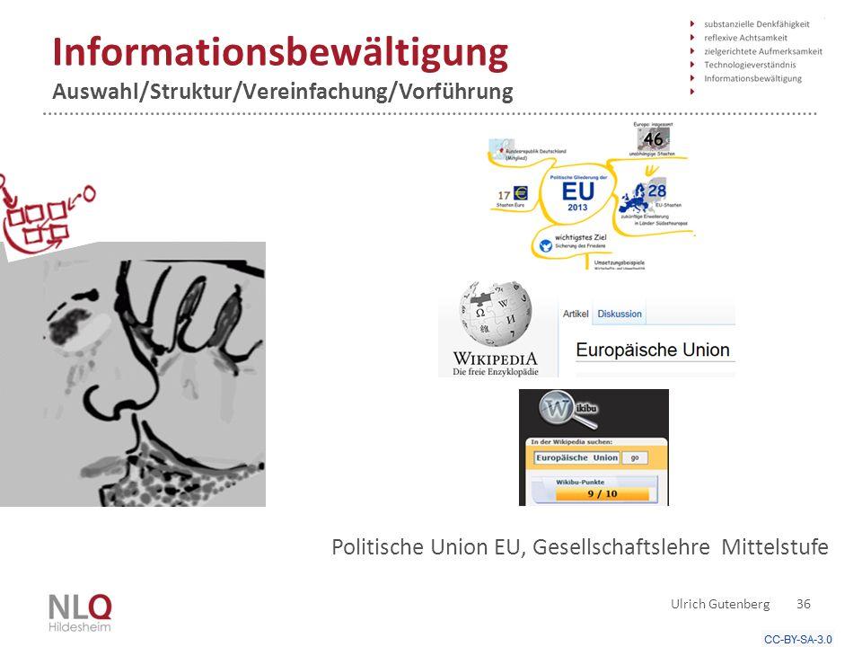 Informationsbewältigung Auswahl/Struktur/Vereinfachung/Vorführung