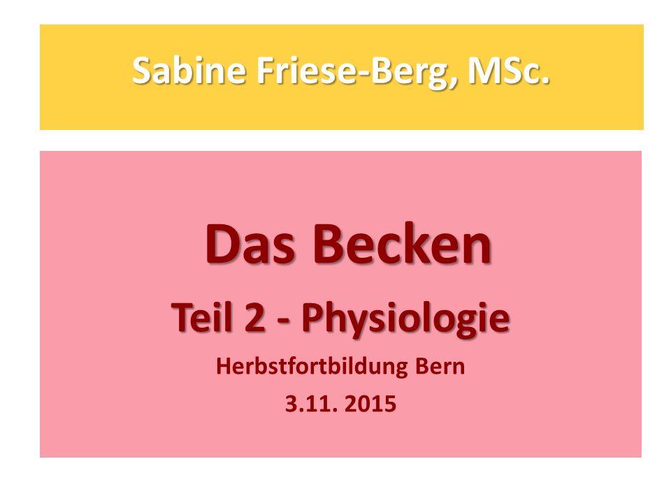 Sabine Friese-Berg, MSc.