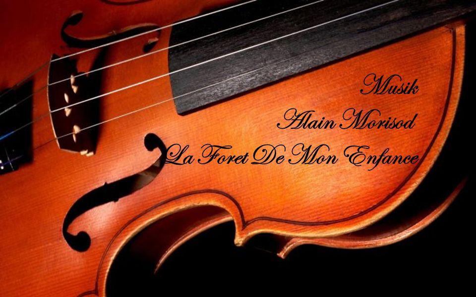 Musik Alain Morisod La Foret De Mon Enfance