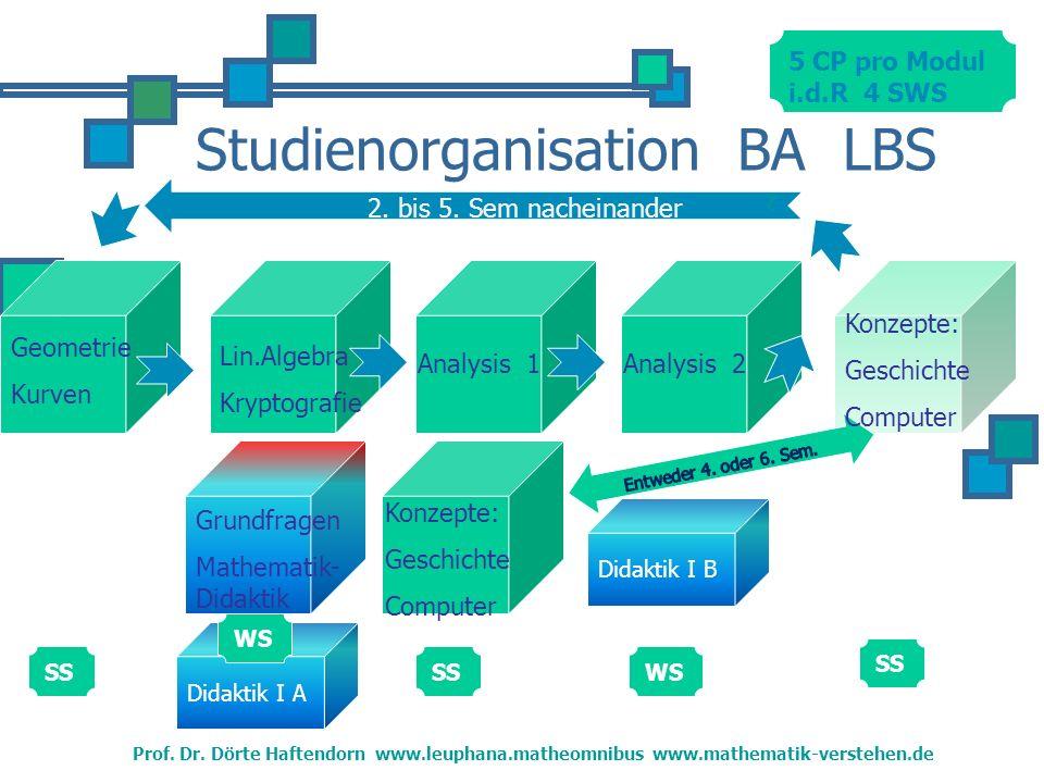 Studienorganisation BA LBS