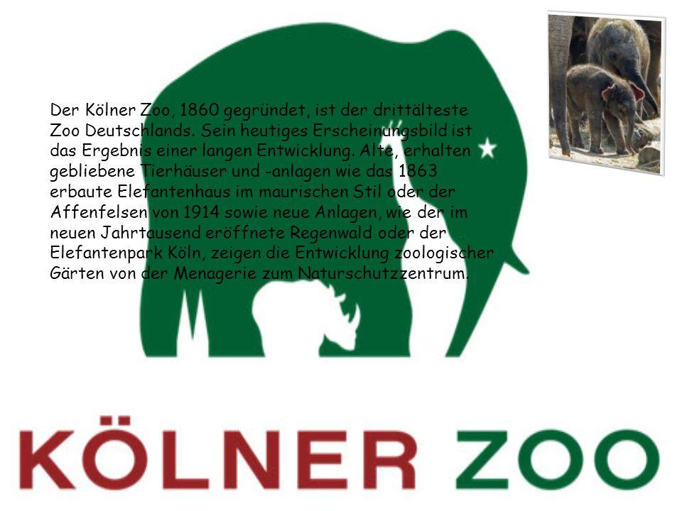 Der Kölner Zoo, 1860 gegründet, ist der drittälteste Zoo Deutschlands