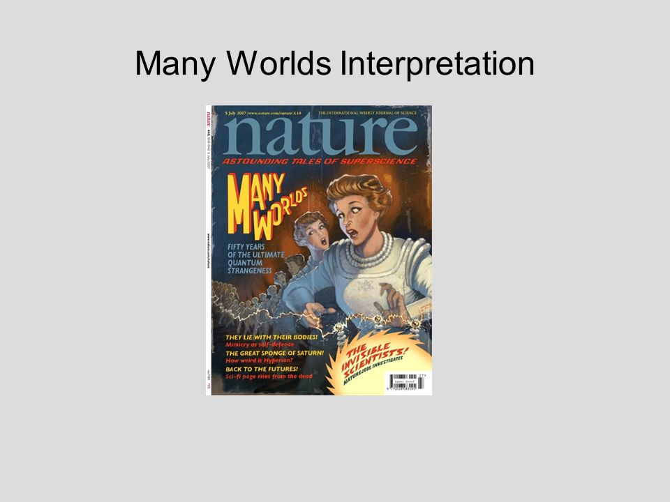 Many Worlds Interpretation