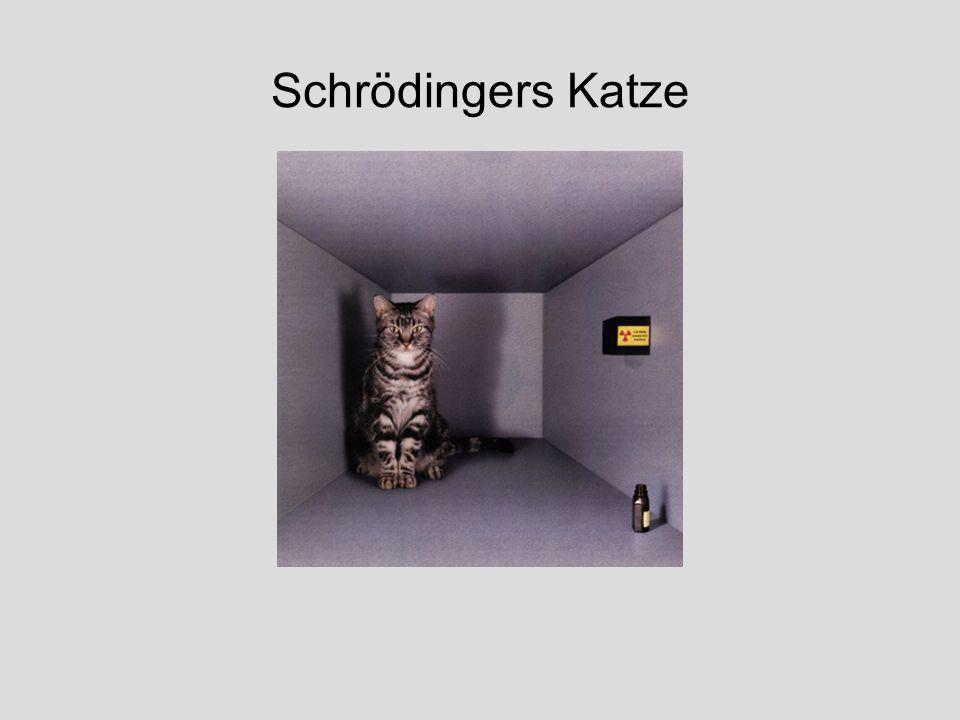 Schrödingers Katze Spektrum, Juli 1994