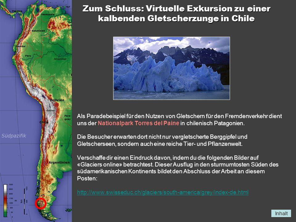Zum Schluss: Virtuelle Exkursion zu einer kalbenden Gletscherzunge in Chile