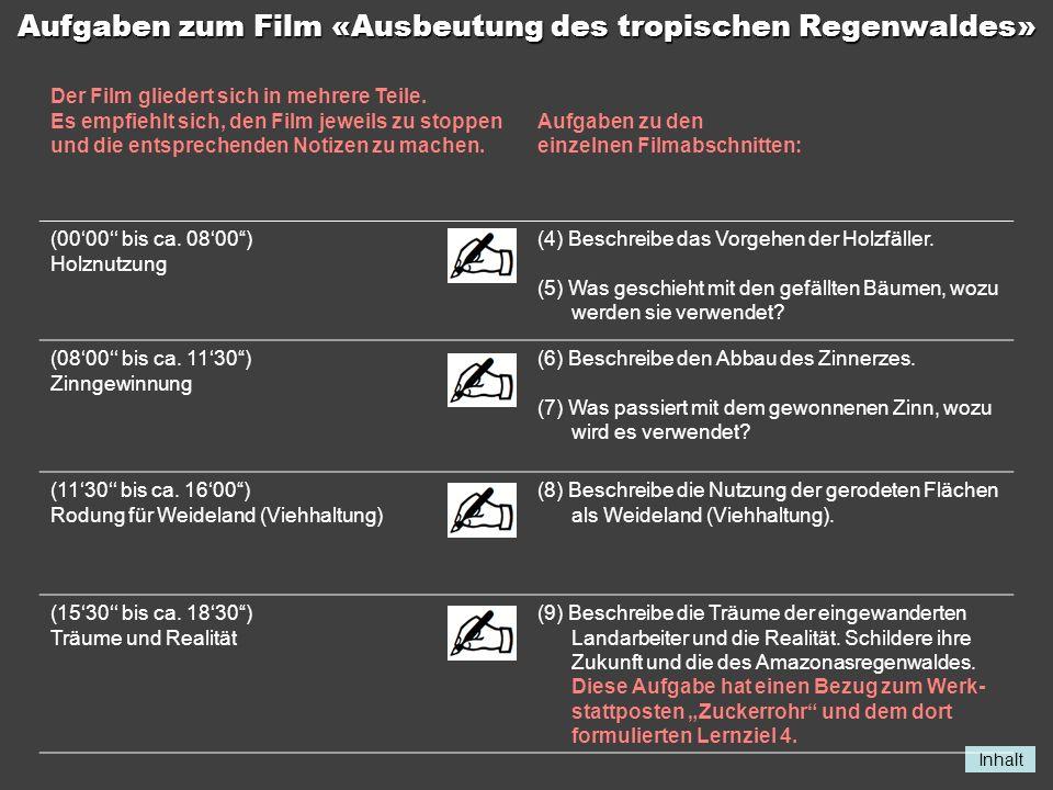 Aufgaben zum Film «Ausbeutung des tropischen Regenwaldes»