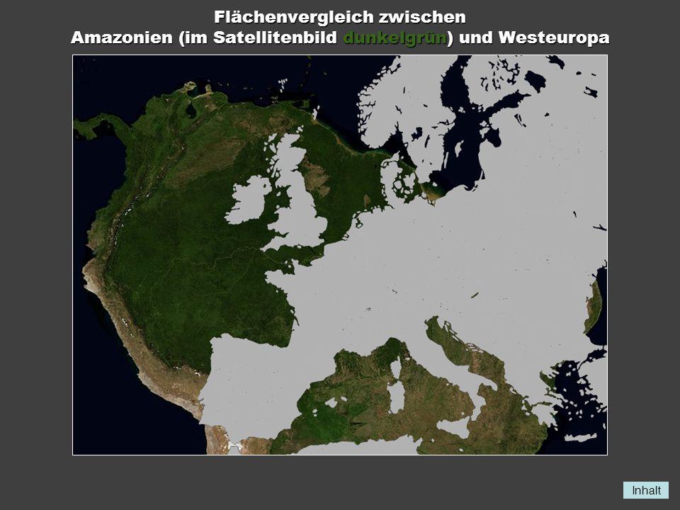 Flächenvergleich zwischen Amazonien (im Satellitenbild dunkelgrün) und Westeuropa