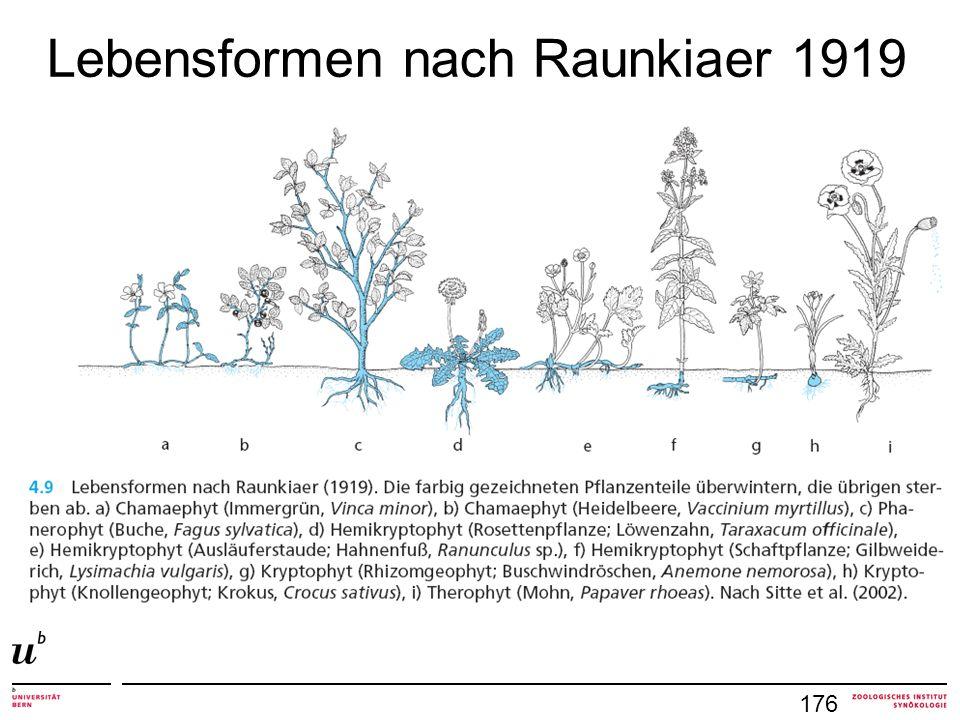 Lebensformen nach Raunkiaer 1919