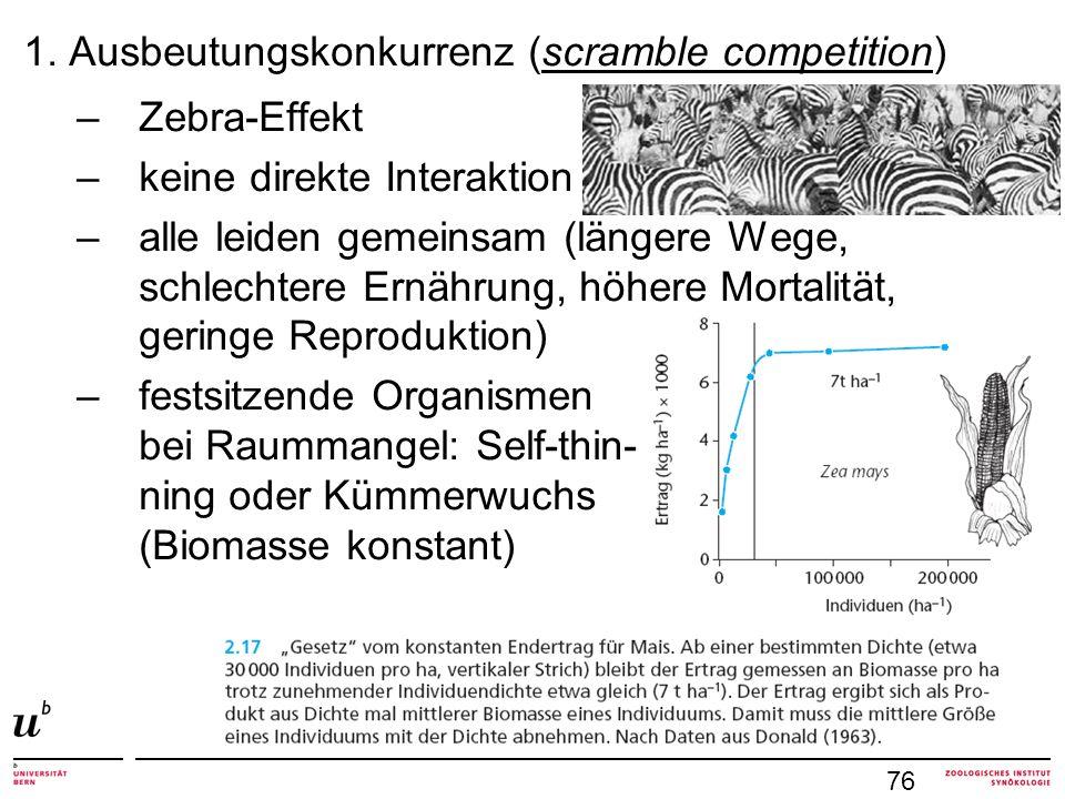 1. Ausbeutungskonkurrenz (scramble competition) Zebra-Effekt