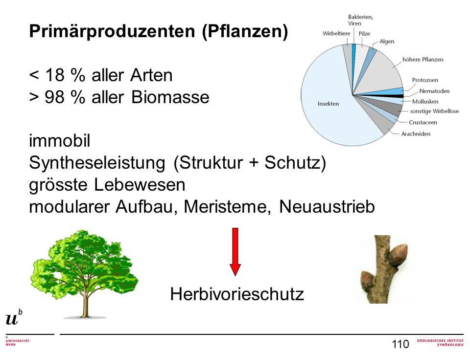 Primärproduzenten (Pflanzen) < 18 % aller Arten