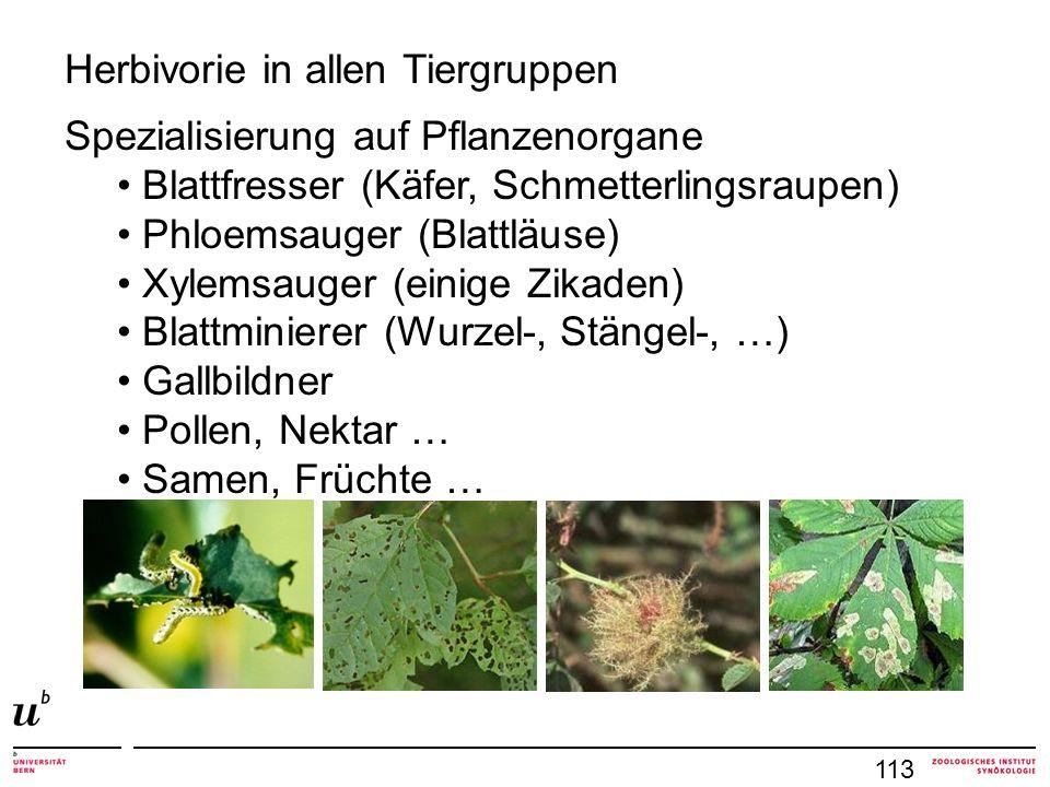 Herbivorie in allen Tiergruppen Spezialisierung auf Pflanzenorgane