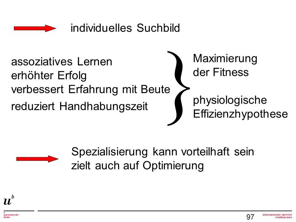 } individuelles Suchbild Maximierung assoziatives Lernen der Fitness