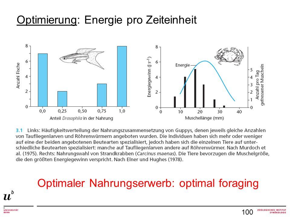 Optimierung: Energie pro Zeiteinheit
