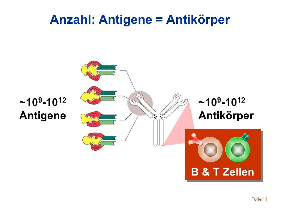 Anzahl: Antigene = Antikörper
