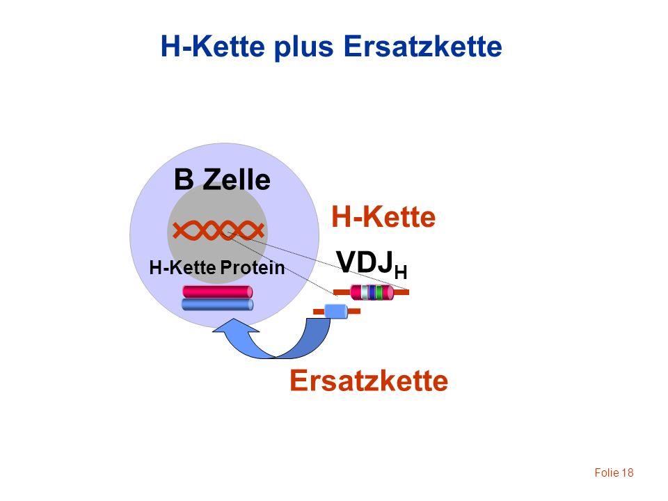 H-Kette plus Ersatzkette