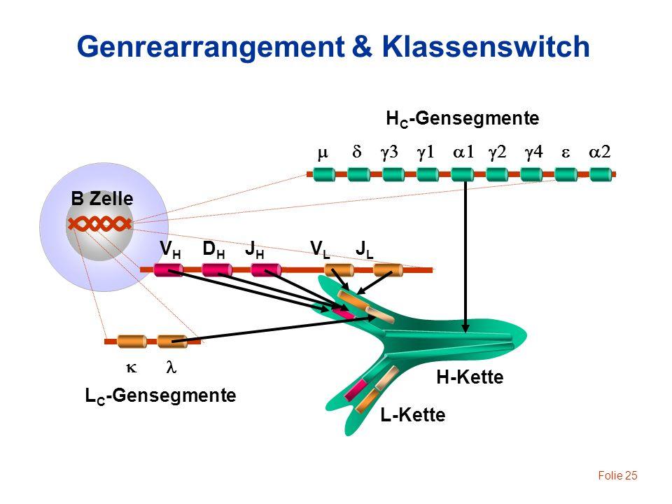 Genrearrangement & Klassenswitch