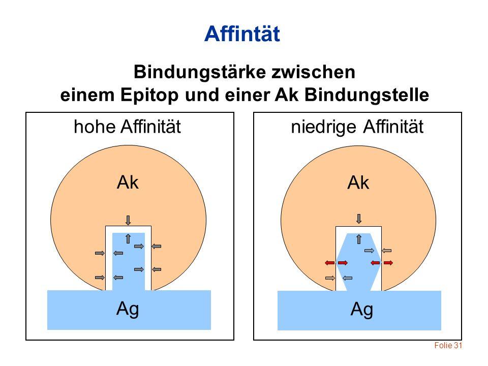 Bindungstärke zwischen einem Epitop und einer Ak Bindungstelle