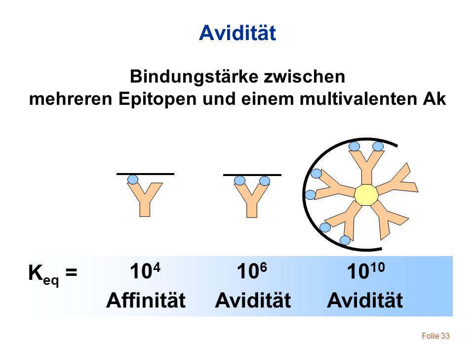 Bindungstärke zwischen mehreren Epitopen und einem multivalenten Ak