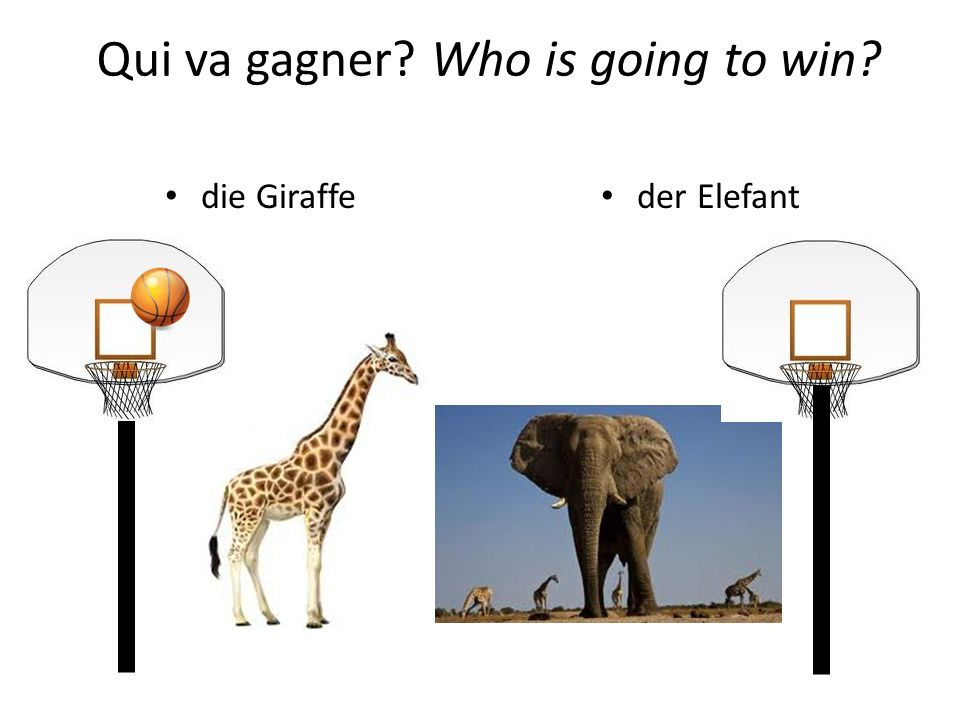 Qui va gagner Who is going to win
